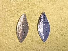 leaf0322-05.jpg